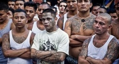 MS-13-criminal-gang