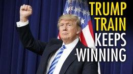 TRUMP WINNING 2
