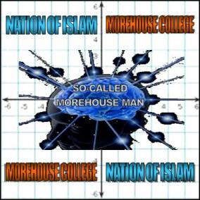 mohouse8