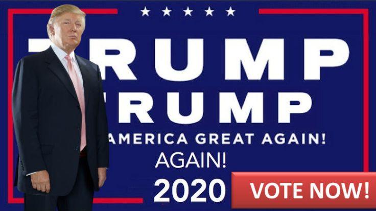 VOTE TRUMP 2020 1