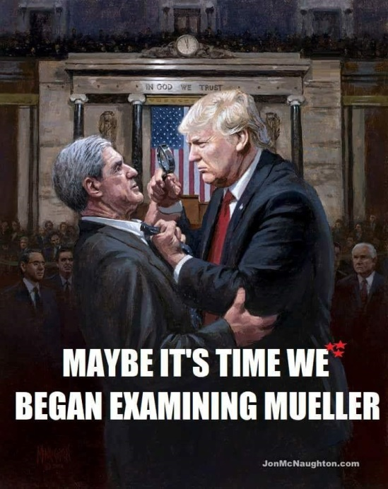 MUELLER UNDER SCRUTINY