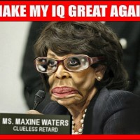 LOW IQ MAXINE WATERS IS SAYING STUPID SHIT AGAIN...