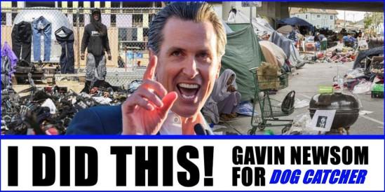 GAVIN NEWSOM FOR DOG CATCHER