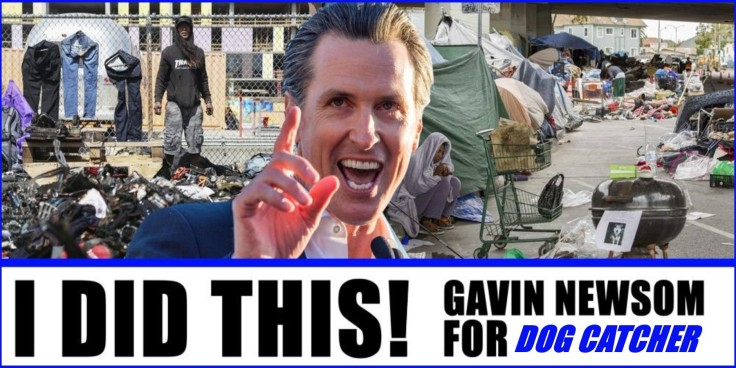 GAVIN NEWSOM FOR DOG CATCHER