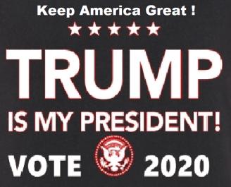 VOTE TRUMP 2020 2