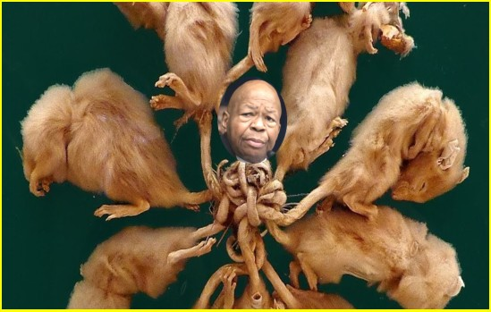 RAT KING ELIJAH CUMMINGS