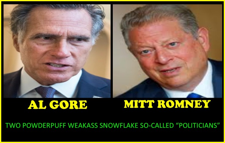 MITT GORE SNOWFLAKES