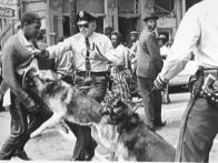 DEMON-RAT POLICIES