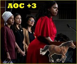HORSE ASS IN CONGRESS