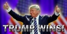 TRUMP WINNING 3