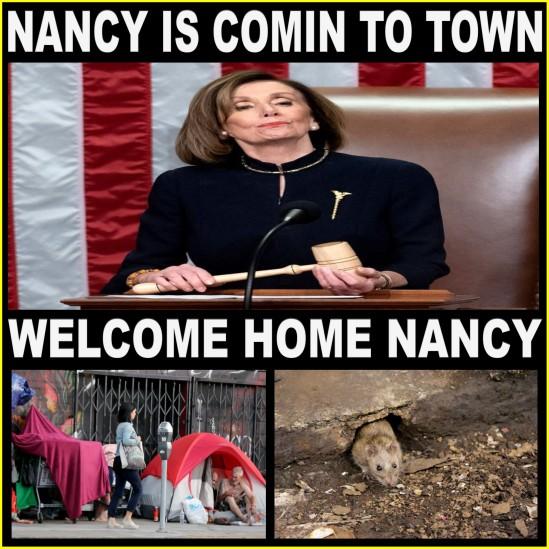 IMPEACH THE RATS NANCY