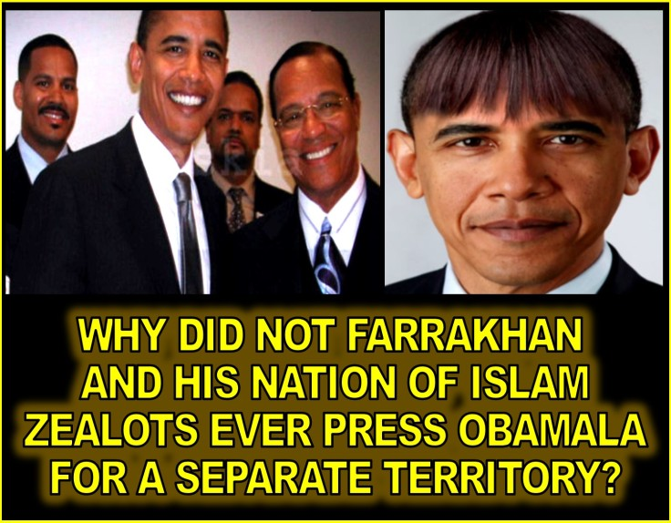 OBAMALA AND FARRAKHAN SEPARATION