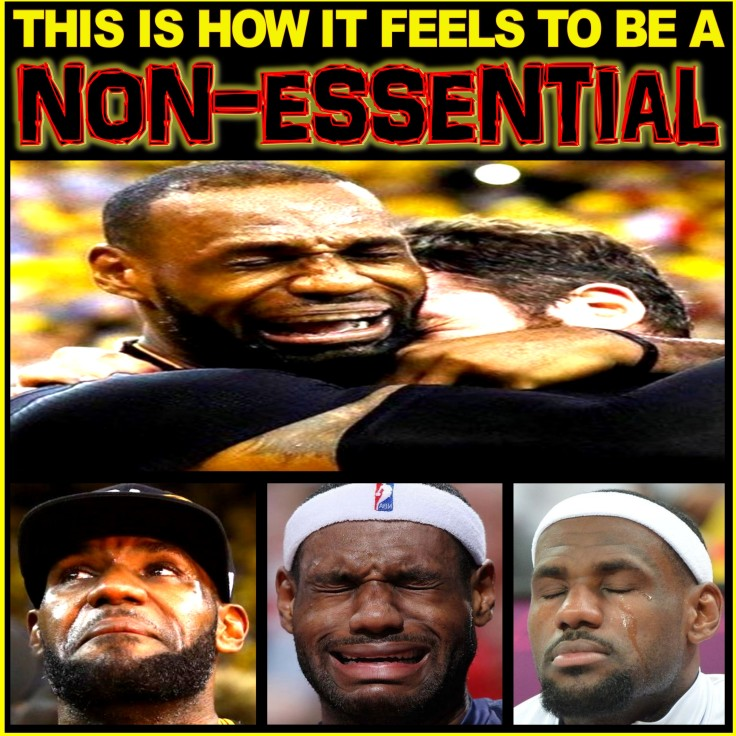 LeBRON JAMES THE NON-ESSENTIAL