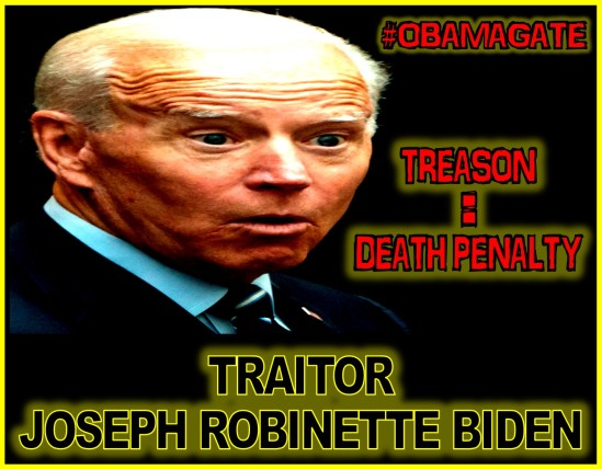 TRAITOR Joseph Robinette Biden Jr